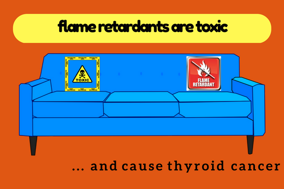 Flame Retardants in Furniture Connected to Cases of Thyroid